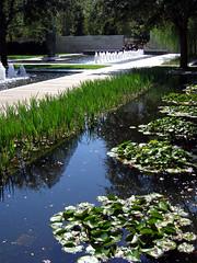 Water Garden (Buford Blue) Tags: sculpture reflection water fountain pool garden landscape dallas texas lillies nasher japaneseiris