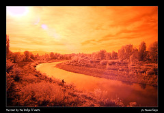 // the river by the bridge // IR // [south] (//BWR) Tags: longexposure autumn red italy nature landscape ir fishing fiume dream bologna infrared reno autunno bwr infrarosso bolognangolob vialetogliatti massimofuligni wwwlamorchemoveilsoleelaltrestelleit