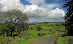 The Long And Winding Road (Scott Foy) Tags: road trees stone composition canon scotland fields walls scurve a620 renfrewshire howwood rowbank rowbankreservoir scottfoy