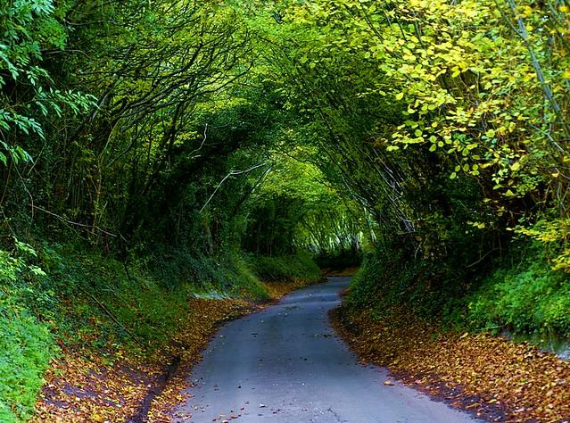 Hobbit Road? 10