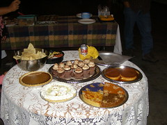 Thanksgiving (13)