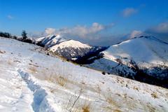 SENTIERINO NELLA NEVE (Momenti di Montagna) Tags: 2005 landscape neve dicembre paesaggio brunate boletto