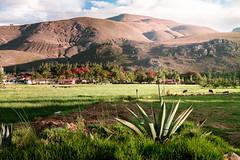 La colpa (Jorge C. Benzunce.) Tags: cajamarca latinoamerica paisajes benzunce campos sudamerica laderas lugares jorge llanuras naturaleza fotos montaas per custodio