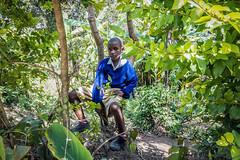 Brykiety z biomasy sposobem na ograniczenie wylesiania Kilimandżaro/Biomass briquettes as a way to reduce deforestation of Mt. Kilimanjaro (PolandMFA) Tags: africa afryka polskapomoc polishaid msz mfapoland