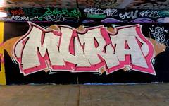 Graffiti Overschie (oerendhard1) Tags: graffiti streetart urban art rotterdam tunneltje underpass overschie mura
