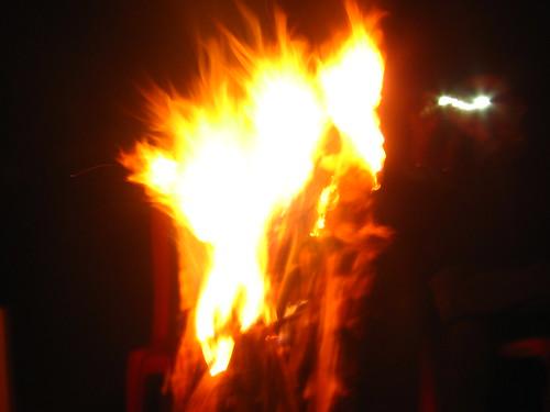 llama flame