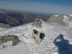 CIMG7635 (Simon d'Etache) Tags: ski pyrénées gourette pic de ger