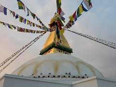 PB260292c (simonsimages) Tags: simonsimages nepal