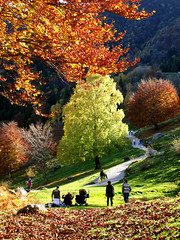 Una domenica autunnale (kenyai) Tags: park autumn