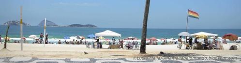 Rio banner2 blog