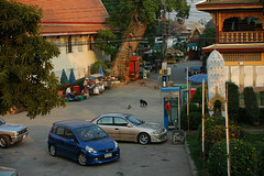 Wat Hong Pathummawat, Pathumthani city, Pathumthani province, Thailand