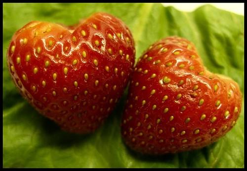 http://farm1.static.flickr.com/101/253298167_df0fc7cd60.jpg