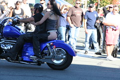 Everybody's looking! (Librarianguish) Tags: festival motorcycles bikes babe thong harleydavidson exhibitionist anacortes chaps bikers hogs harleys 906 oysterrun