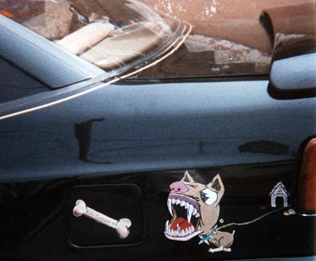 dog painting artwork graphic canine pitbull bone doghouse hyundai scoupe