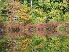 Mendon Ponds Park Rochester, NY
