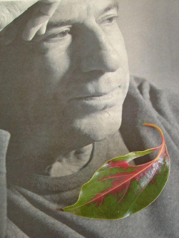 José Luis Perales en otoño