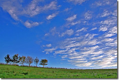 Hagg Bank Northumberland Sky 1 HDR (jay_kilifi) Tags: uk blue sky green clouds northumberland hdr wylam bluex