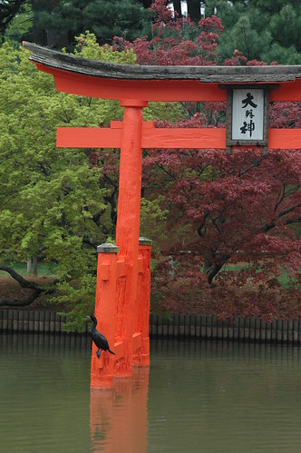 Cormorant on Torii in the Japanese Garden