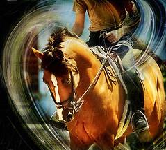 Dorset Hunter-Jumper (Isabelle Ann) Tags: horse art digital photoshop wow caballo cheval jumping graphics bravo vermont photographer digitalart fantasy dorset isabelle jumper 200views hunter cavallo cavalo pferd equine equus paard horseshows hunterjumper mostbeautiful 200plusviews views200 manchestervt dorsetvt equineart vermontsummerfestival mywinner isabelleann isabelleanngreen equestrianart hunterjumpers dorsetsummerfestival equinephotographer hunterjumpershows artistichorse isabellegreen equitationart hunterjumperart dorsethorseshow hunterjumperphotography hunterjumprphotographer isabellegreenphotography isabelleannphotography isabelleannhorses mostbeautifulhorses equineartist hunterjumperphotographer hunterjumperphotograhy