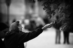 Woman and a Sparrow (joshuabarnatt) Tags: old woman paris france bird animals happy flying feeding notredame sparrow