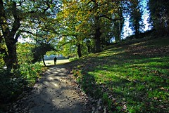 Sheffield Parks and Countryside