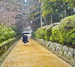 Walking in black under the snowfall (aurelio.asiain) Tags: people snow colors beauty japan photoshop painting walking scenery alone dress infinity religion monk buddhism explore vision zen figure  snowfall vanishing solitary e