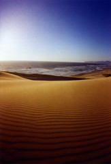 Where sandy dunes lie... (Zeb Andrews) Tags: oregon coast seascapes pinhole pacificocean beaches pacificnorthwest sanddunes zeroimage capekiwanda kodak100uc zero69 bluemooncamera zebandrews zebandrewsphotography