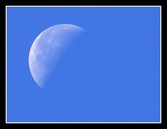 Luna en la maana - Moon in the morning (jose_miguel) Tags: espaa moon miguel lumix interestingness spain bravo jose luna panasonic explore morocco maroc marrakech tele marrakesh marruecos fz50 magicdonkey outstandingshots marraquech abigfave 123f50 ltytrx51
