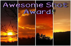 Awesomeshot award