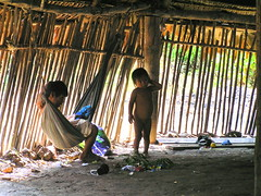 Los Boras (pierre pouliquin) Tags: peru amazon native tribe iquitos loreto indigenous amazonas amazona amazonia tribu natives amazonie perou boras tribue amazonaz losboras