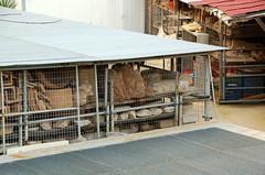 Arttifacts in Storage (RobW_) Tags: new november museum 2006 athens greece acropolis nov2006 25nov2006 newacropolismuseum makriyianni