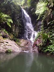 Elabana Falls (Gilmore Photos) Tags: waterfall australia queensland oreillys greenmountains lamington elabanafalls diamondclassphotographer