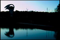 Puffin (Alan Weir) Tags: bridge winter sea cliff cold west reflection skye bird beach nature water clouds sunrise landscape skull scotland countryside boat highlands swan isleofskye harbour wildlife seagull dive ducks scottish bank seal puffin seals portobello swallow portree lindisfarne causeway yatch westhighlandway bassrock lobsterpot mallaig lochsheil lochmoidart bracora