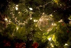 Christmas Tree (Tonym1) Tags: christmas ornament d80