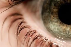 Window (fabiogiolito) Tags: iris macro eye lens olho eyelash reverse reverselens lenteinvertida cilio