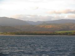 IMG_2568.JPG (Dan F.) Tags: hawaii napalicoast bluedolphin kauai