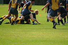DSCF0040.JPG (bowdoin_rfc) Tags: rugby bowdoin mma