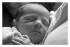 Sweet Dreams (Tara Kelly Photography) Tags: life boy blackandwhite bw baby love children child brother sleep birth newborn totalexposure
