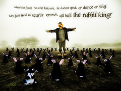 The Rabbit King (Matt West) Tags: mist rabbit halloween field fog pumpkin scarecrow hedge views200 views300 reallybadpoetry