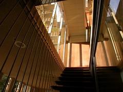 Neutra VDL 2 Interior Staircase (Gavin Froome) Tags: modernarchitecture midcenturymodern neutra richardneutra dionneutra