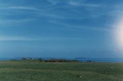 11.西嶼燈塔旁的草原