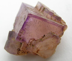 Fluorite - Kentucky (adamantine) Tags: pink rock stone purple crystal kentucky marion cube mineral geology cubic fluorite mineralogy 2on2featurepair