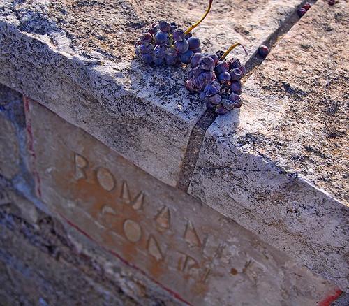 Una foto del Domaine Romanee Contì