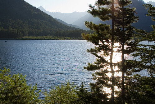 Sunlight on the Lake
