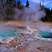 Yellowstone Beats Bellagio - by Fort Photo