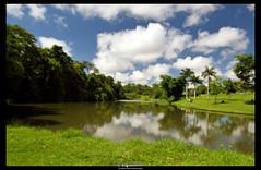 wide open (Augusto Miranda Martins) Tags: reflection water brasil d50 landscape nikon dam jardim botanico represa encontro goiania goias