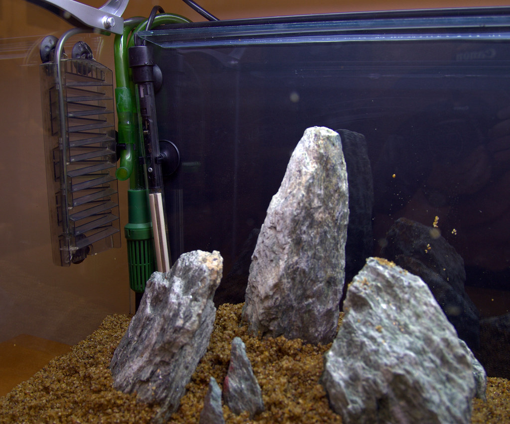 Building my planted/breeding aquarium #3