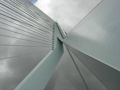 Erasmus bridge (Antan) Tags: rotterdam erasmusbrug erasmusbridge