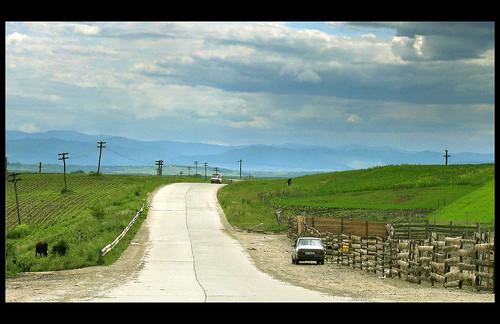 moara road