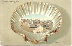 Vintage Postcard, Tent City 1